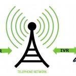 IVR Development Services